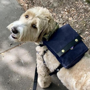 Commuter Backpack - Navy - Wag Theory