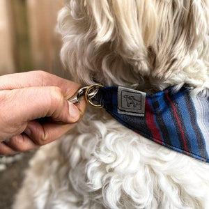 Metro Bandana Collar - Blue Plaid - Wag Theory