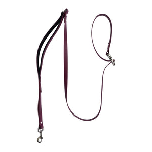 Waterproof Biothane Leash with Traffic Lead - Wag Theory