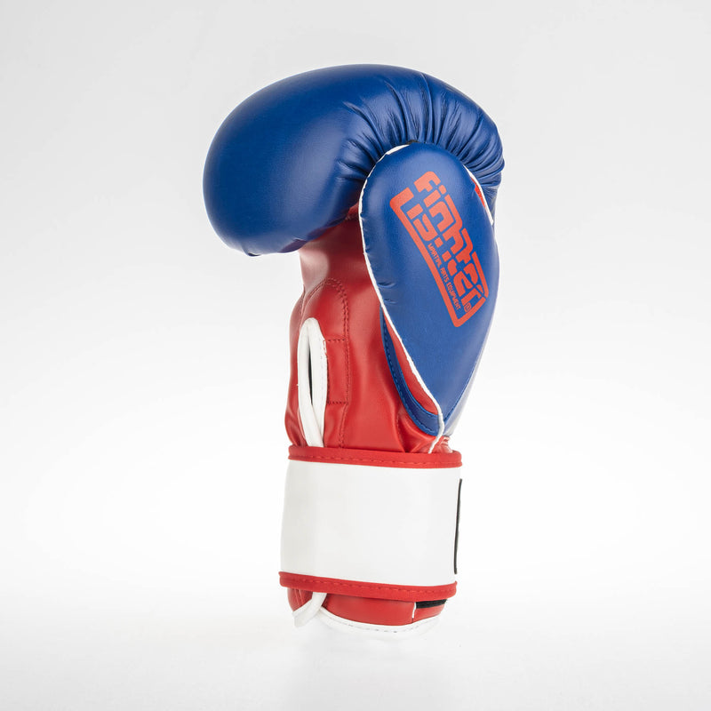 Fighter Boxing Gloves SPEED - tricolor