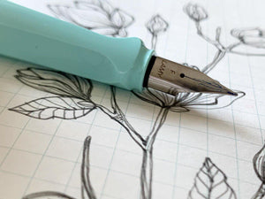 Draw The Line: Sketching and Journaling with Fountain Pens