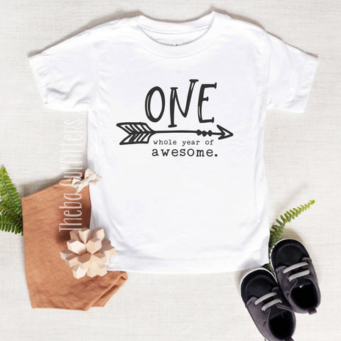 'One Whole Year of Awesome' Birthday Tee Shirt First Birthday Baby Toddler Theba Outfitters