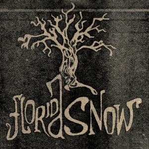 Florida Snow - Florida Snow (CD)