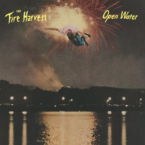 The Fire Harvest - Picture of a Man (Digital Single)