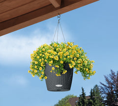 Nido Cottage All In One Hanging Planter