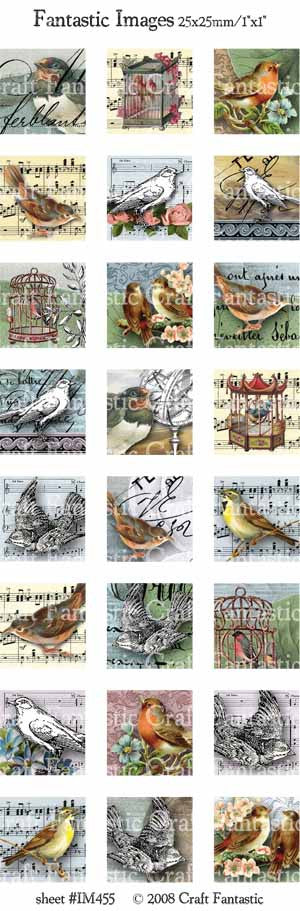 Birds Image Sheet