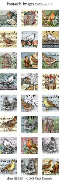 BIRDS medium squares & circles, small ovals, hearts