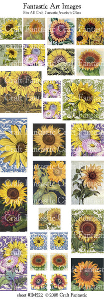 SUNFLOWERS all jeweler's glass sizes