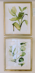 botanical watercolor prints