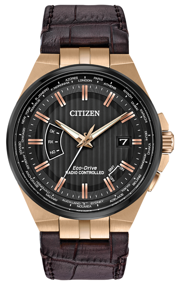 Citizen World Perpetual A-T Watch CB0168-08E