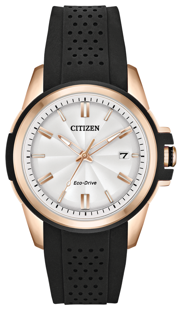 Citizen FE6133-09A Watch AR - Action Required