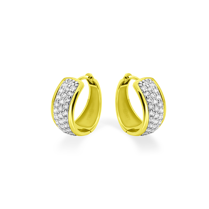 Silver Earrings With Gold Plating KF07Y