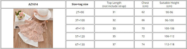 Baby Girl Clothes Sets 2020 Summer Kids Clothes Floral Chiffon Halter+Embroidered Shorts Baby Girl Coming Home Outfit