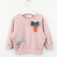 Winter T-shirt New Spring Fashion Full Sleeves Birthday Girl Shirt 3-7 Years Old
