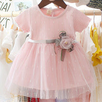 Newborn Dresses Princess Dress First Birthday Outfit Girl HT223