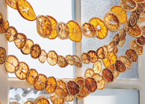 Dried citrus garland hanging.