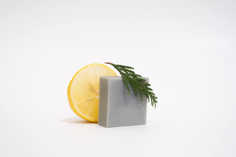 Silk Conditioner & Shave Bar - FRESH