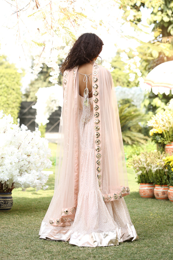 Blush Pink Anarkali set