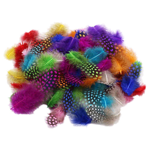 Pene de Bibilica de Guineea Naturale Decorative Set Fulgi Puf Craft Hobby Multicolor