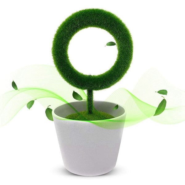 Plant Air Purifier For Indoor - Teme Store