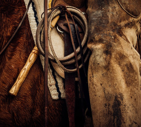 How to Care for Your Horse Tack and Leather Goods