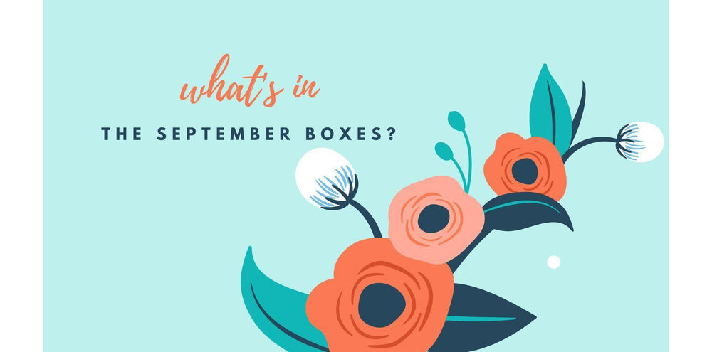 REVEALED: September 2020 Kinder Beauty Box(es)—The Sunflower & Dahlia Collections-Kinder Beauty