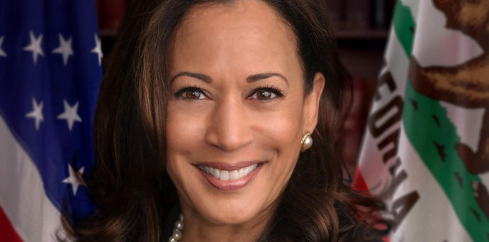 Kamala Harris Inspires Me With Her Beauty and Power