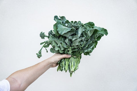 This is an image of a giant head of kale with a person holding it out. You can only see the person's arm.