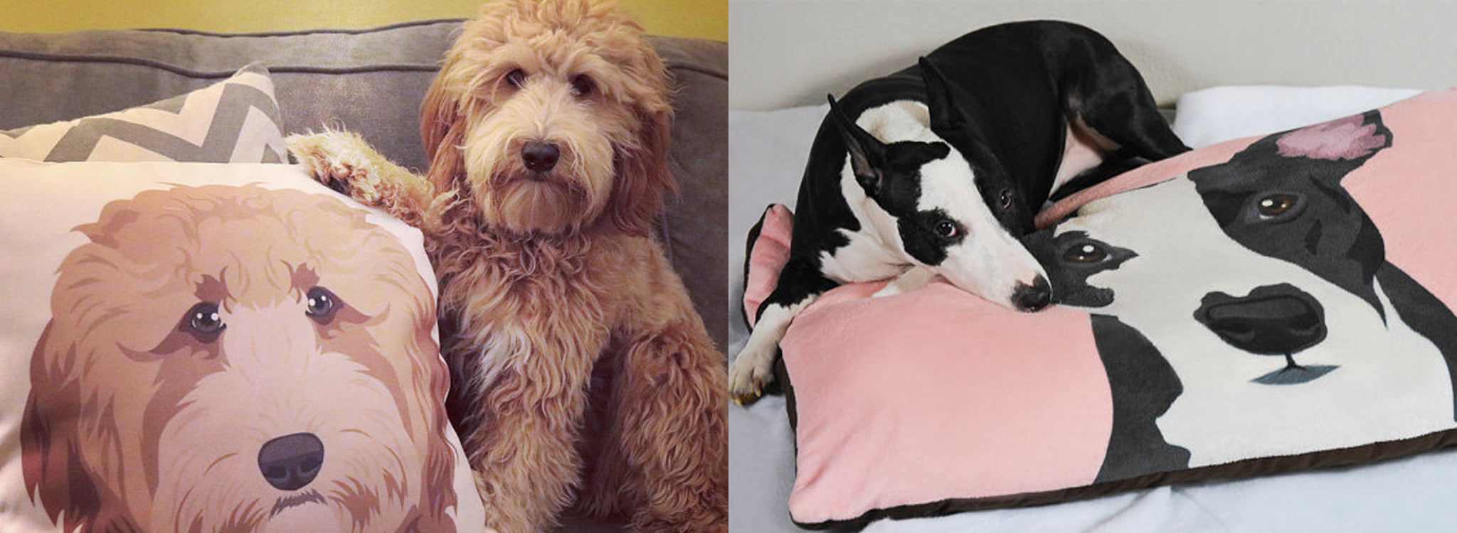 Pet Portrait Pillow and Dog Bed