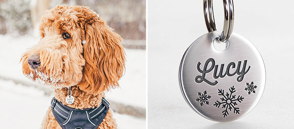 Unique Durable Dog ID Tags for Dogs