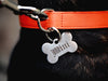 Custom pet bone ID tag with style