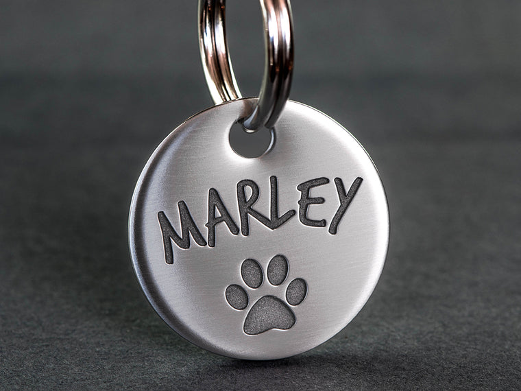 Stainless Steel Dog ID Tag