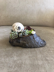 Succulent and Sea Shell Sculpture | Original Design | Mantle Piece | Centerpiece l One-Of-A-Kind