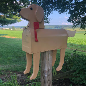 Golden Doodle | Unique Dog Mailbox | pp014
