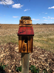 Bluebird House | Amish Made | Functional Birdhouse