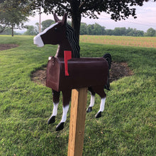 Load image into Gallery viewer, We are are not horsing around!! Unique and Quirky Horse Mailbox