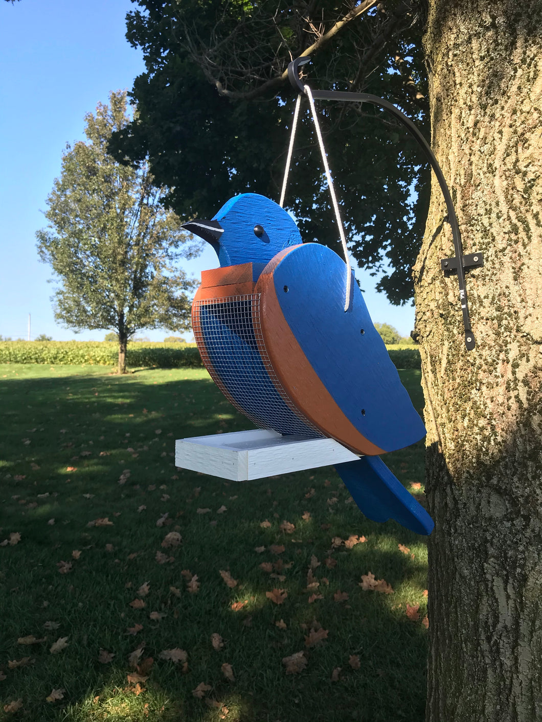 Bluebird Feeder | Rustic Unique Design | WFBLF