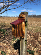 Load image into Gallery viewer, Bluebird House | Amish Made | Functional Birdhouse