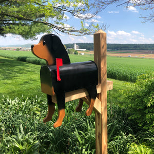 Rottweiler | Rotty | Unique Dog Mailbox