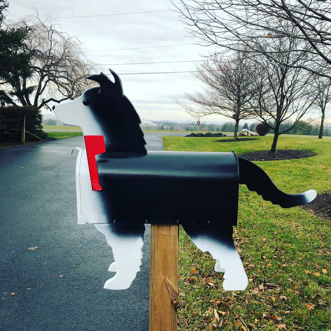 Border Collie Mailbox | Unique Dog Mailbox