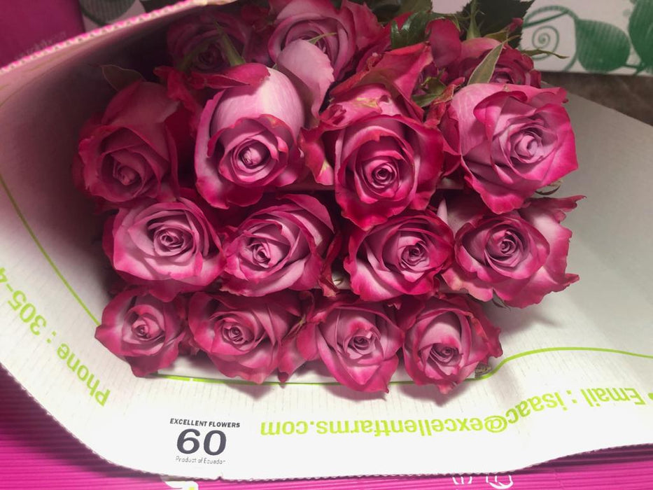 bunch rose