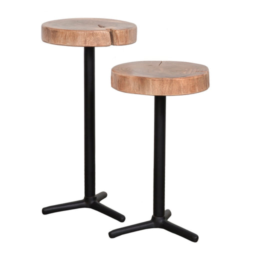 Organic Martini Tables - Set of 2 - Greenhouse Home