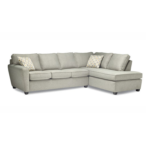 Echo Sectional