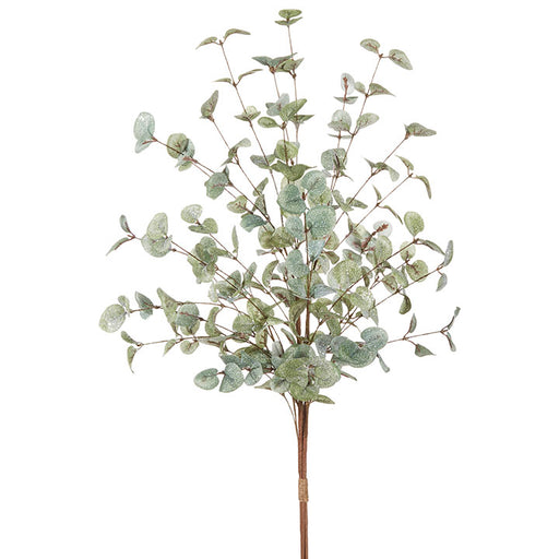 Iced Eucalyptus Bundle