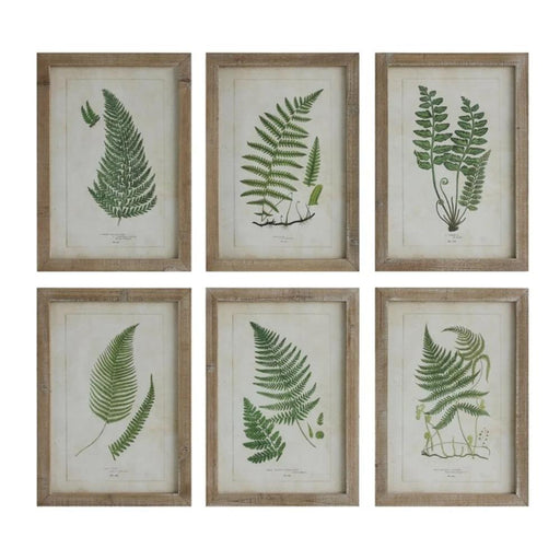 Wood Framed Wall Decor w/Ferns - Greenhouse Home