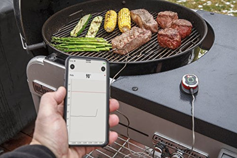 Image of iGrill Mini