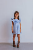 little girl's blue swiss dot dress