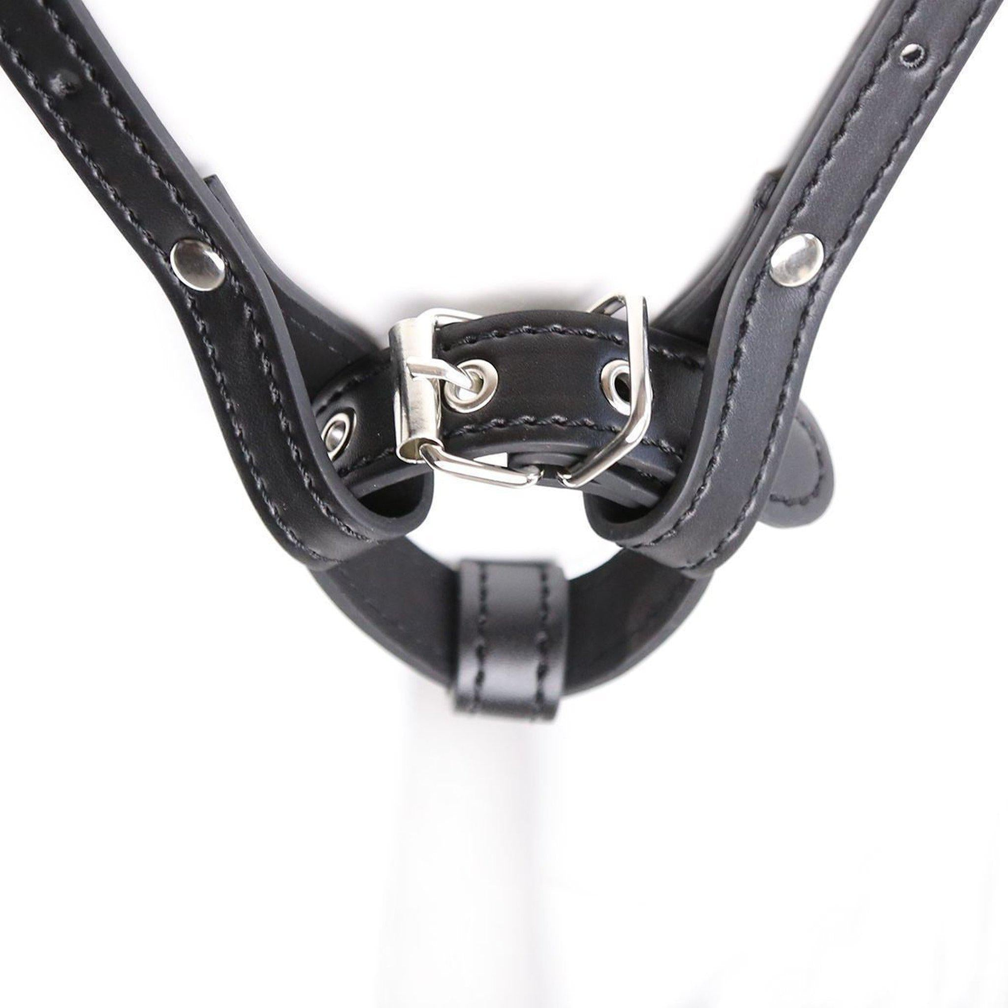 Forced Orgasm Chastity Belt-Good Girl xox-buy-bdsm-bondage-gear-tools-toys-online-good-girl-xox