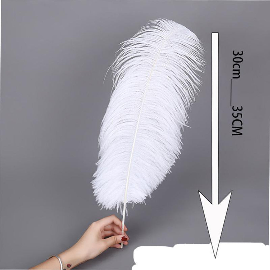 Luxurious White Erotic Feather-Good Girl xox-19cm-24cm-buy-bdsm-bondage-gear-tools-toys-online-good-girl-xox