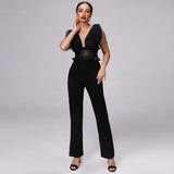 Primetime Looks-Deep V-neck elegant black jumpsuit